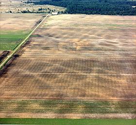Hoewel vanaf de grond niets meer van de walletjes van het celtic field bij Hijken in Drenthe is te zien, zijn ze als verkleuringen op de luchtfoto nog zichtbaar. (Foto: Paul Paris)