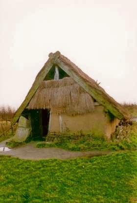 Een gereconstrueerde boerderij zoals de hunebedbouwers die maakten omstreeks 3200 voor Christus. Het dak is met riet gedekt, de wanden bestaan uit gevlochten twijgen met leem eroverheen gesmeerd. (Foto: Vereniging voor Archeologische Experimenten en Educatie)